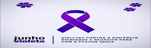 A Câmara Municipal de Divinópolis apoia o Junho Violeta